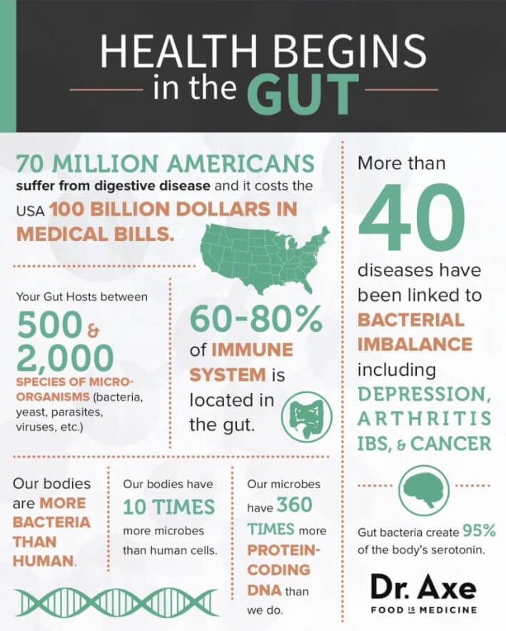 gut health infographic